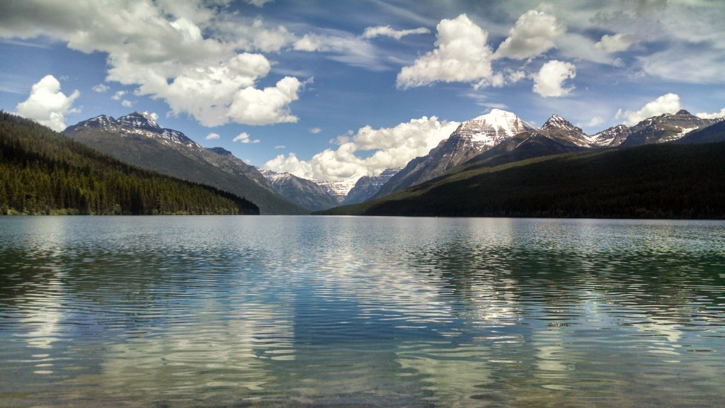 The south end of Bowman lake in Glacier National Park. Photo by Catherine Woods