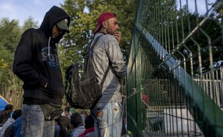 Migrants look through a fence as they wait to enter Hungary, after the Hungarian police sealed the border with Serbia, near the village of Horgos, Serbia, September 15, 2015. Hundreds of migrants spent the night in the open on Serbia's northern border with Hungary, their passage to western Europe stalled on Tuesday by a Hungarian crackdown to confront the continent's worst refugee crisis in two decades. REUTERS/Marko Djurica - RTS14XR
