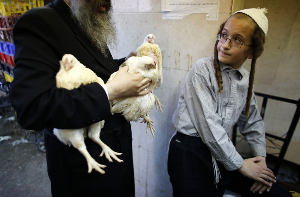 An ultra-Orthodox Jewish youth looks at a man holding chickens as they take part in the Kaparot ritual in Jerusalem's Mea Shearim neighbourhood, September 12, 2013, ahead of Yom Kippur, the Jewish Day of Atonement, which starts at sundown today. Photo by REUTERS/Ammar Awad