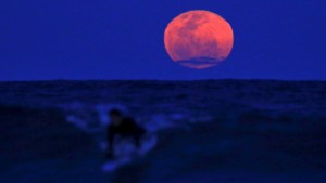 "A surfer catches a wave as a ""supermoon"" rises at Manly Beach in Sydney, Australia on Sept. 28. The moon is closest to the Earth in its orbit, making it appear much larger and brighter than usual. Photo by David Gray/Reuters"