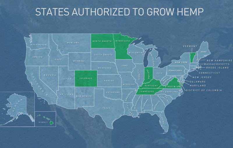 The Drug Enforcement Administration told PBS NewsHour it has granted several dozen permits to grow hemp in 9 states including Kentucky. Graphic by Lisa Overton/PBS NewsHour Weekend
