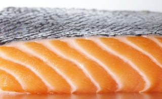The Food and Drug Administration on Thursday approved genetically modified salmon, the first such altered animal for human consumption in the United States. Photo by Getty Images