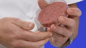 Chef Rich McGeown prepares to cook the world's first lab-grown beef burger during a launch event in west London, August 5, 2013. The in-vitro burger, cultured from cattle stem cells, the first example of what its creator says could provide an answer to global food shortages and help combat climate change, was fried in a pan and tasted by two volunteers. The burger is the result of years of research by Dutch scientist Mark Post, a vascular biologist at the University of Maastricht, who is working to show how meat grown in petri dishes might one day be a true alternative to meat from livestock.The meat in the burger has been made by knitting together around 20,000 strands of protein that has been cultured from cattle stem cells in Post's lab. REUTERS/Toby Melville (BRITAIN - Tags: ENVIRONMENT SCIENCE TECHNOLOGY ANIMALS FOOD) - RTX12AYV