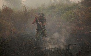 An Indonesian soldier checks on a peat land fire near Palangkaraya, central Kalimantan, Indonesia October 28, 2015. Indonesia's weather agency failed to predict that the effects of the El Nino weather phenomenon this year would be worse than in 1997, a senior minister said on Wednesday, as the government considers declaring a national emergency due to forest fires. The fires raging across the archipelago have created a haze that has blanketed much of Southeast Asia in recent months and, according to authorities, have left more than half a million Indonesians suffering from respiratory ailments.  REUTERS/Darren Whiteside  - RTX1TKEU
