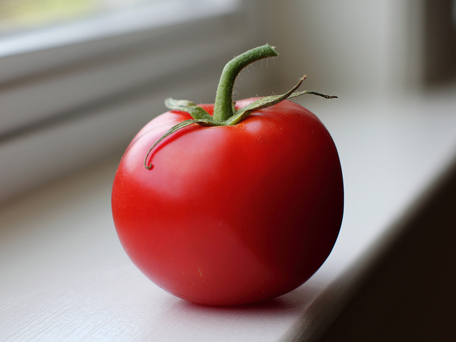 Epigenetics can ripen tomatoes and stop the negative effects of plant cloning. Photo by Mr.TinDC/via Flickr/CC BY-ND 2.0