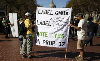 Two demonstrators hold a sign during a rally in support of the state's upcoming Proposition 37 ballot measure in San Francisco, California, on Oct. 6, 2012. The country's largest food companies are urging Congress to stop mandatory labeling of genetically modified foods. Photo by Stephen Lam/Reuters