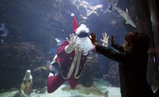 A young boy waves to French diver Pierre Frolla, a four-time apnea diving world champion, dressed as a Santa Claus as he swims with fish in an aquarium of the Oceanic Museum of Monaco December 11, 2015 . Photo by: Eric Gaillard/Reuters