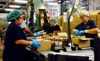 Workers box jars of pasta sauce at a plant run by Chelten House Products in Bridgeport, New Jersey July 27, 2015.  The company produces private-label sauces, salsas and salad dressings for grocers such as Kroger, Whole Foods and Trader Joe's. As the Federal Reserve puzzles over what is holding back U.S. wages and productivity six years into the economic recovery, a pasta sauce company in New Jersey may offer some answers. Picture taken July 27, 2015. To match Insight USA-ECONOMY/LABOR REUTERS/Jonathan Spicer - RTX1NDCW