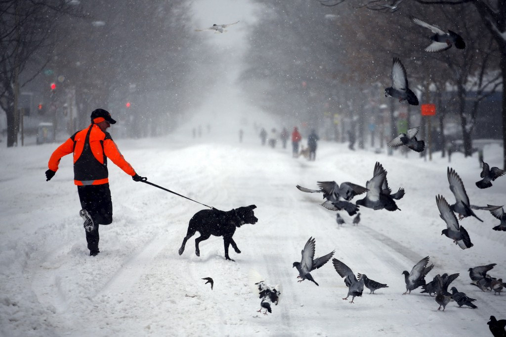 A man runs with his dog along a street covered by snow during a winter storm in Washington Jan. 23, 2016. Photo By Carlos Barria/Reuters