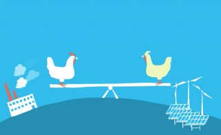 Washington legislators are considering a variety of complicated carbon pricing plans. We explain the basics of carbon pricing ... and we use chickens to do it. Image by MacGregor Campbell