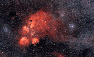 The Cat's Paw Nebula, located 5,500 light years distant, contains a large concentration of star-forming cold dust, according to the ATLASGAL's survey of the Earth's southern skies. Photo by the European Southern Observatory/Digitized Sky Survey.