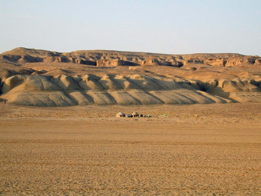 Field camp of the Uzbek-Russian-British-American-Canadian expedition at Dzharakuduk in the Kyzylkum Desert of Uzbekistan. The fossils of Timurlengia eutica were found about midway along the cliffs in the background. Photo courtesy of Brusatte et al., PNAS, 2016.