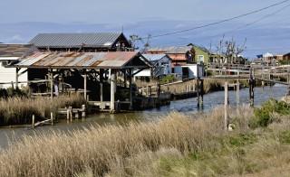 Isle de Jean Charles, Terrebonne Parish, Louisiana, USA.