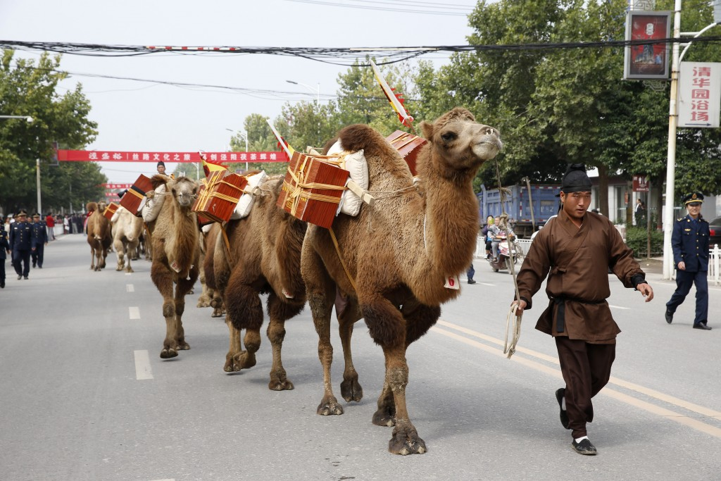 An man in ancient Chinese costume walks next to a camel while participating in the Silk Road Cultural Journey, in Jingyang, Shaanxi province September 19, 2014. Organized by Shaanxi government and a local tea company, the journey, started on Friday in Jingyang, Shaanxi province and was expected to finish in Kazakhstan more than a year later. A total of 136 camels, eight horse-drown carriages and more than 100 people in ancient Chinese costumes will travel an estimated 15,000 kilometers (9,321 miles) along the Silk Road with tea leaves while giving performances and promoting the tea products on the way, local media reported. REUTERES/Rooney Chen (CHINA - Tags: TRAVEL SOCIETY BUSINESS POLITICS) - RTR46W61