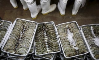 Overseas products processed by child or slave labor, in some cases shrimp, now face tougher restrictions for coming into the U.S. Photo taken on August 28, 2015. Photo by Reuters