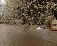 A car lies submerged in the Tall Timbers subdivision after flooding near Shreveport, Louisiana March 9, 2016, in a photo provided by the Bossier Parish Sheriff's Office. Picture taken March 9, 2016. REUTERS/Deputy Josh Cagle/Bossier Sheriff's Office/Handout via Reuters   FOR EDITORIAL USE ONLY. NOT FOR SALE FOR MARKETING OR ADVERTISING CAMPAIGNS. THIS IMAGE HAS BEEN SUPPLIED BY A THIRD PARTY. IT IS DISTRIBUTED, EXACTLY AS RECEIVED BY REUTERS, AS A SERVICE TO CLIENTS - RTSA71P