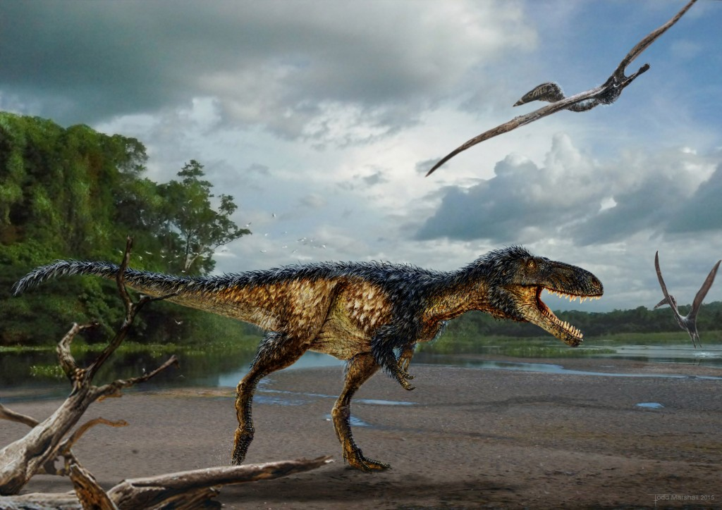 Life reconstruction of the new tyrannosaur Timurlengia euotica in its environment 90 million years ago. It is accompanied by two flying reptiles (Azhdarcho longicollis). The fossilized remains of a new horse-sized dinosaur, Timurlengia euotica, reveal how Tyrannosaurus rex and its close relatives became top predators, according to a new study published in the Proceedings of the National Academy of Sciences. Painting by Todd Marshall