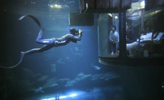"""A diver takes pictures as people look at sharks from an underwater room structure installed in the Aquarium of Paris, France, on March 14, 2016. Airbnb and the Aquarium of Paris offer contest winners a night underwater sleeping with sharks and create a research platform for """"misunderstood"""" shark species. Photo by Charles Platiau/Reuters"""