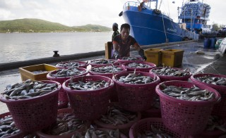 SONGKHLA, THAILAND - FEBRUARY 2:  Fishing boat workers help to sort fish after it was unloaded from a  boat at the  port in Songkhla on February 2, 2016. Around 100 people have been arrested by authorities in a recent crackdown on abuses involving Thailand's multi-billion dollar seafood industry.  The deep-rooted problem caused  the huge global brand, Nestle in 2015 to admit that it had discovered clear evidence of slavery at sea in parts of the Thai supply chain. Thailand  is the world's third largest exporter of seafood.  (Photo by Paula Bronstein/ Getty Images )