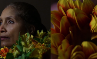 """A frame from """"Portrait of My Mother,"""" a video project by Sophia Allison. Image courtesy of Sophia Allison"""