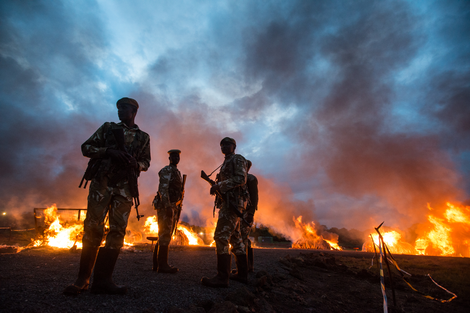 The pyres continue to burn as evening approaches. Photo by Mia Collis for the Kenya Wildlife Service