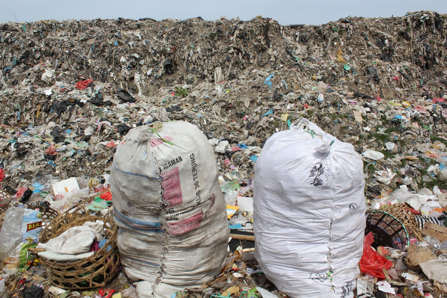 Humans have made 8 3 billion tons of plastic  Where does it