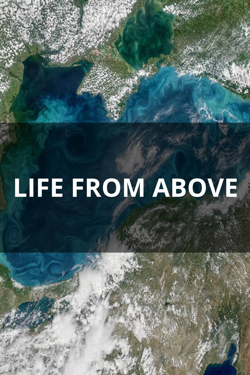 Life From Above