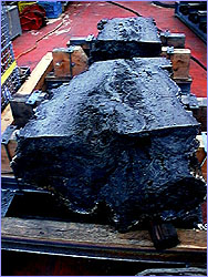 tHalf of the sulfide chimney Roane will go to the American Museum of Natural History.