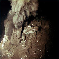 Billowing 'smoke' from a deep-sea vent.