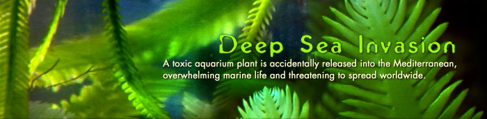 Deep Sea Invasion: A toxic aquarium plant is accidentally released into the Mediterranean, overwhelming marine life and threatening to spread worldwide.
