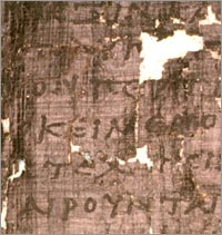 Herculaneum codex