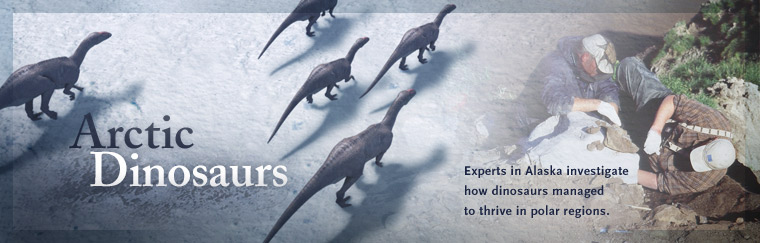 Arctic Dinosaurs: Experts in Alaska investigate how dinosaurs managed to thrive in polar regions. Airs on PBS October 7, 2008