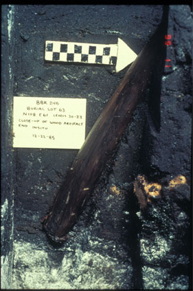 A wooden stake stuck in the layers of a peat bog