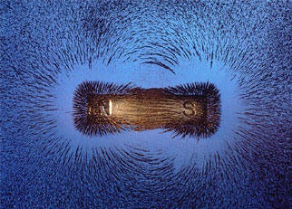 A magnet surrounded by iron shavings.