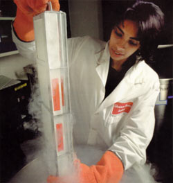 Bhatia in lab