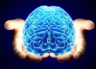 A computer image of a brain being held in hands.