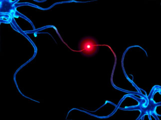 A computer image of neurons communicating.