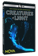Creatures of Light