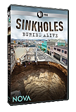 Sinkholes—Buried Alive