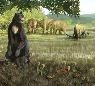 giant short-faced bear