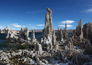Arsenic-eating bacteria live in Mono Lake