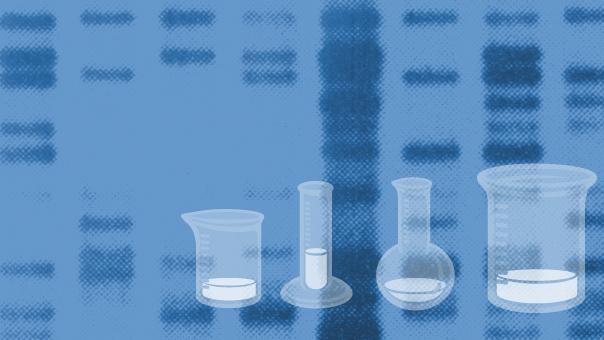 unterrichtsstunde genetischer code