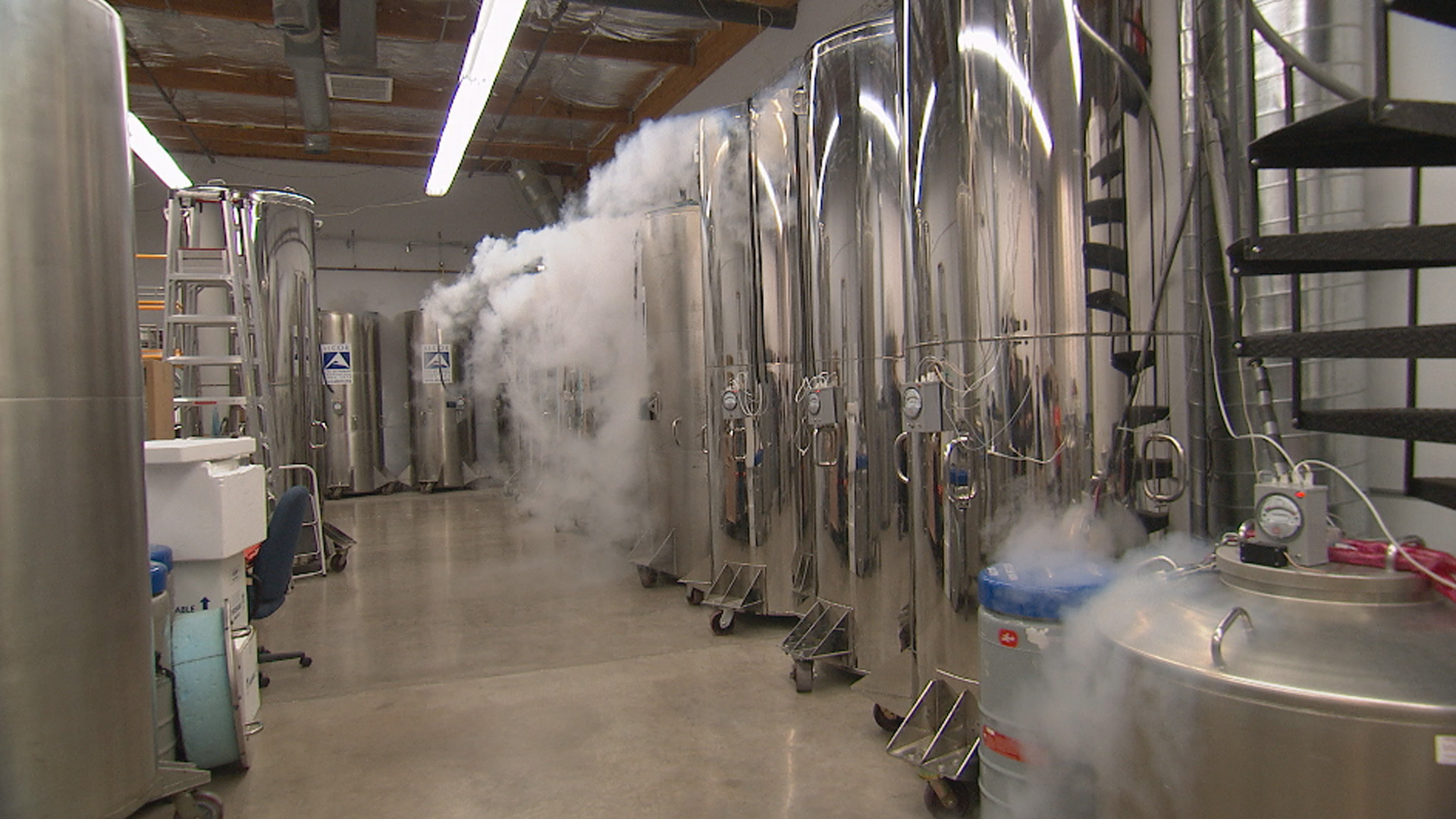 nova   official website cryonics