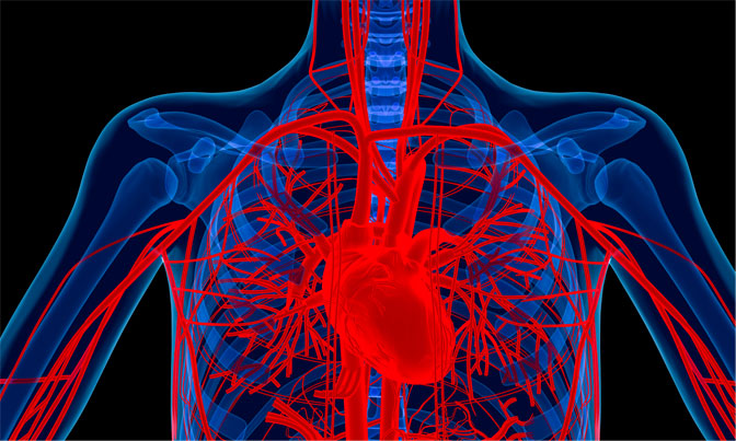 NOVA - Official Website | Heart Disease Treatments