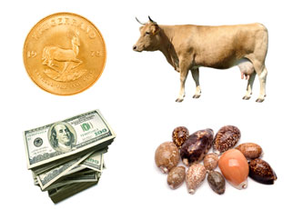 Kruggerand, 0 bills, shells, cow