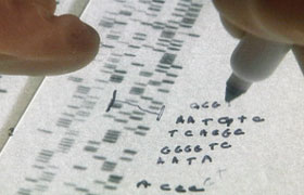 A read-out from a gene-sequencing machine.