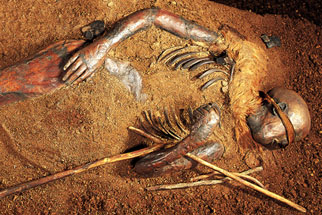 the bog bodies and what they Home october 30, 2017  mystery of the bog bodies  he and other scientists will continue piecing together the story of tollund man and other bog bodies they hope to someday learn who these men, women, and children were—and how they wound up in their mossy graves.
