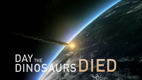 NOVA - Official Website | Day the Dinosaurs Died