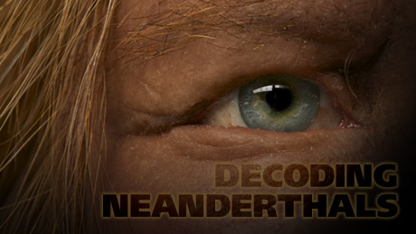 http://www.pbs.org/wgbh/nova/assets/img/posters/decoding-neanderthals-vi.jpg