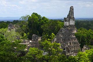 characteristics of mayans